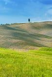 Fält och fred i den varma solen av Tuscany, Italien Royaltyfri Fotografi
