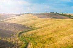 Fält och fred i den varma solen av Tuscany, Italien Royaltyfria Foton