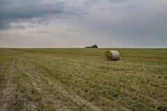Fält och höstack Royaltyfri Bild