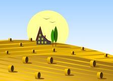 Fält och hus Arkivfoton