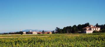 Fält och landskap royaltyfria foton