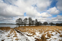 Fält och sjö i vintern Arkivfoton
