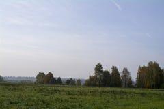 Fält och skogar i hösten i centrala Ryssland, guling, gräsplan, orange färgpulver Royaltyfri Bild
