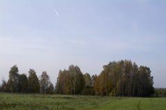 Fält och skogar i hösten i centrala Ryssland, guling, gräsplan, orange färgpulver Fotografering för Bildbyråer