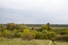 Fält och skogar i nedgången i centrala Ryssland - övreräckvidderna av den Oka floden Royaltyfri Bild