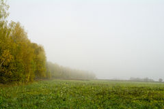 Fält och skogar i nedgången i centrala Ryssland - gulna, göra grön, orange färgpulver Arkivfoton