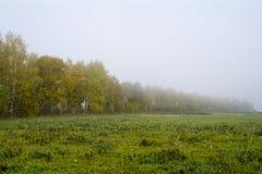 Fält och skogar i nedgången i centrala Ryssland - gulna, göra grön, orange färgpulver Fotografering för Bildbyråer