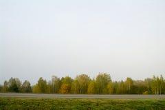 Fält och skogar i nedgången i centrala Ryssland - gulna, göra grön, orange färgpulver Royaltyfri Foto