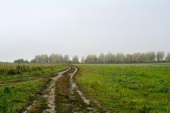 Fält och skogar i nedgången i centrala Ryssland - spring för landsväg längs fältet Royaltyfri Foto