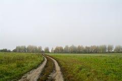 Fält och skogar i nedgången i centrala Ryssland - spring för landsväg längs fältet Arkivfoton