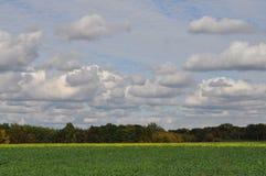 Fält och sky Arkivfoto