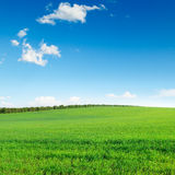 Fält och sky arkivbilder