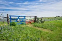 Fält och staket för Texas bluebonnet i vår royaltyfri fotografi