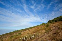 Fält på berglandskap med blå himmel Arkivfoton