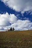 Fält på Fruska Gora Arkivbild