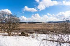 Fält Patrially som täckas i snö och blå himmel arkivfoton