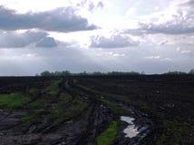 fält plogad fjäder Arkivfoton