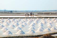 fält salt thailand arkivbild