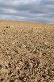 fält som plogas nytt Royaltyfria Bilder