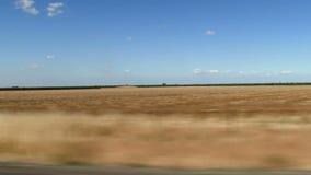 Fält som ses från den rörande bilcentralen Kalifornien stock video