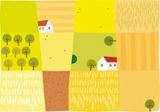 Fält som ska skördas Arkivfoton