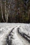 Fält som täckas i snö arkivfoto