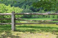 Fält till och med staketen Royaltyfri Foto