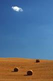 fält tuscany Arkivfoton