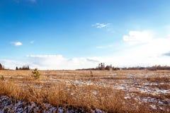 Fält under snön Ren vårhimmel Fotografering för Bildbyråer