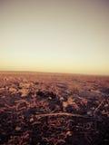 Fält under soluppgång Arkivbilder