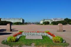 Fältet av fördärvar i St Petersburg Arkivfoto
