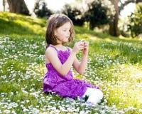 fältet blommar flickan royaltyfri foto
