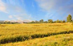 Fältet och bron, Ryssland Royaltyfria Foton
