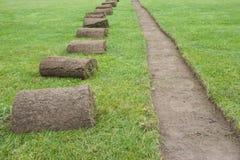 fältgräs rullar sod royaltyfria foton
