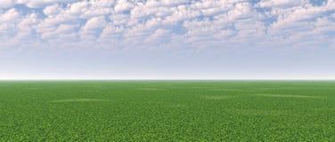 fältgreen Arkivbild