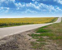 fälthuvudväg Arkivfoto