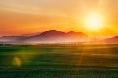 fältillustration över soluppgångvektor Fotografering för Bildbyråer