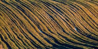 Fältlandskap på solnedgången, linjer Fotografering för Bildbyråer