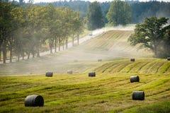 fältmeetfloder två Fotografering för Bildbyråer