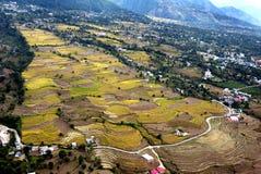 Fältnaturen inhyser kullar och vägar Royaltyfri Bild