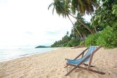 Fältsäng på stranden Royaltyfria Foton