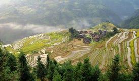 fältterrass för kines 4 Arkivbilder
