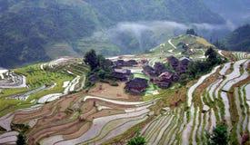 fältterrass för kines 5 Arkivbild