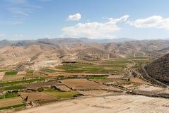 Fältterrasser av den Colca kanjonen, Peru Royaltyfria Foton