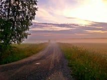 Fältväg i dimman royaltyfri foto
