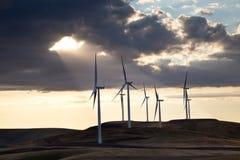fältwindmill Fotografering för Bildbyråer