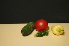 Fänkål för gurkatomatspansk peppar royaltyfria foton