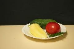 Fänkål för gurkatomatspansk peppar i en platta fotografering för bildbyråer