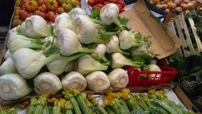 Fänkål i bondemarknad Royaltyfria Foton
