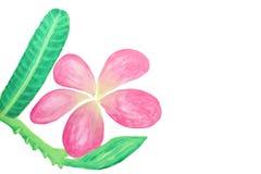 Färben Sie Blumen im Aquarell handgemalt Stockbild